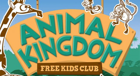 animal-kingdom-featured